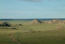 Voyage à la carte en Mongolie