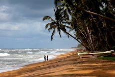 Voyage au Sri Lanka: Observer les baleines à Mirissa