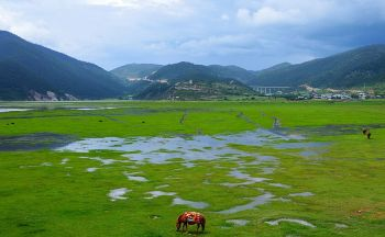Séjour classique dans le Yunnan en quatorze jours