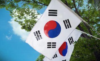 Circuits Best of Corée
