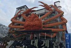 Voyage en Corée du Sud: le festival du crabe des neiges d'Uljin