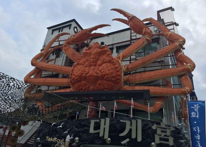 Séjour Corée du Sud : Le festival du crabe des neiges d'Uljin