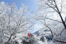 Voyage Corée du Sud : Le Mont Hallasan