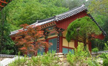 Un séjour sur-mesure en Corée du Sud