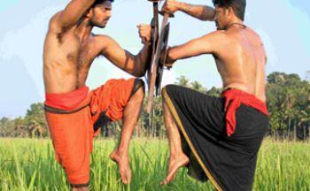 Séjour en Inde au Kerala en huit jours