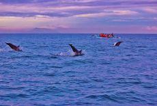 Séjour Indonésie : les plages