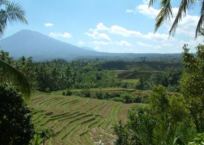 Extension à Sumatra en cinq jours