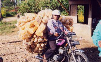 Extension aventures à Ujungkulon (Ouest de Java) en huit jours