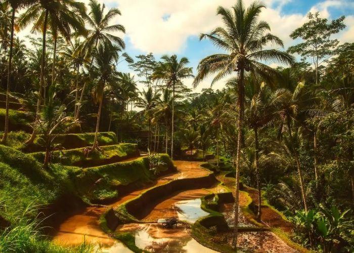 Voyage combiné Java et Bali  en onze jours