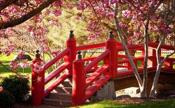 Voyage au Japon: Le Setsubun – La Fête de l'Arrivée du Printemps