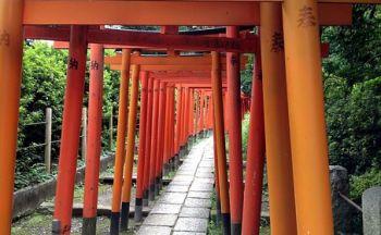 Voyage découverte du Japon version longue en quarante quatre jours