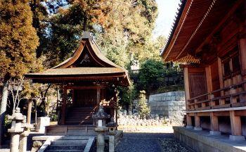 Extension dans les Alpes Japonaise en quatre jours