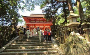 Voyage découverte du Japon en treize jours