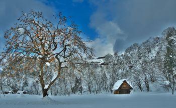 Voyage découverte des Alpes Japonaise en quatre jours