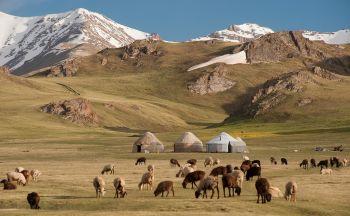 Voyages Tendance et Voyages à Thèmes au Kirghizstan