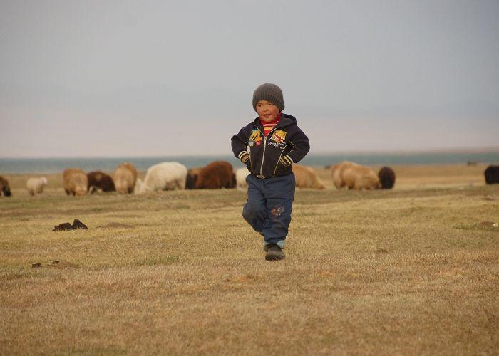 Voyage au Kirghizistan, extension au lac Song Kul en quatre jours