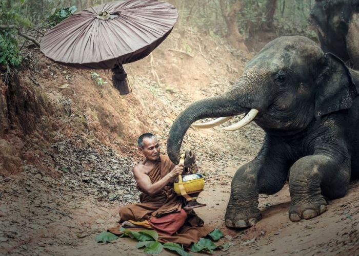 Circuit sur mesure Vietnam et Laos : Voyage combiné Indochinois en quatorze jours