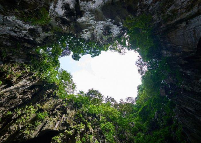 Extension découverte de la Forêt de Pierre en quatre jours