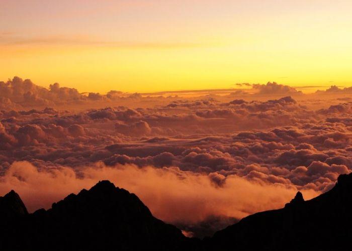 Extension au parc du Mont Kinabalu en deux jours