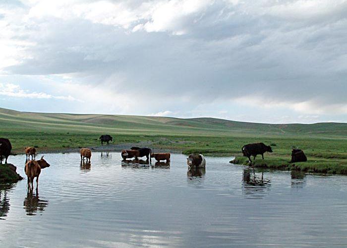 Extension aux sables chantant, Gobi extrême sud en quatre jours