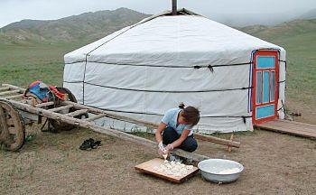 Voyage découverte des principaux sites de Mongolie en seize jours