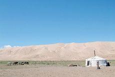 Voyagiste Mongolie : Partir avec une agence ou seul ?