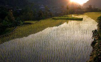 Circuit aux Philippines: découverte de Luzon à Palawan en vingt jours