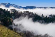 Voyage en Russie : La forêt vierge de Komi