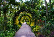 Circuit Singapour : que visiter pour une semaine?