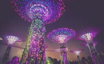 Découverte de Singapour en sept jours