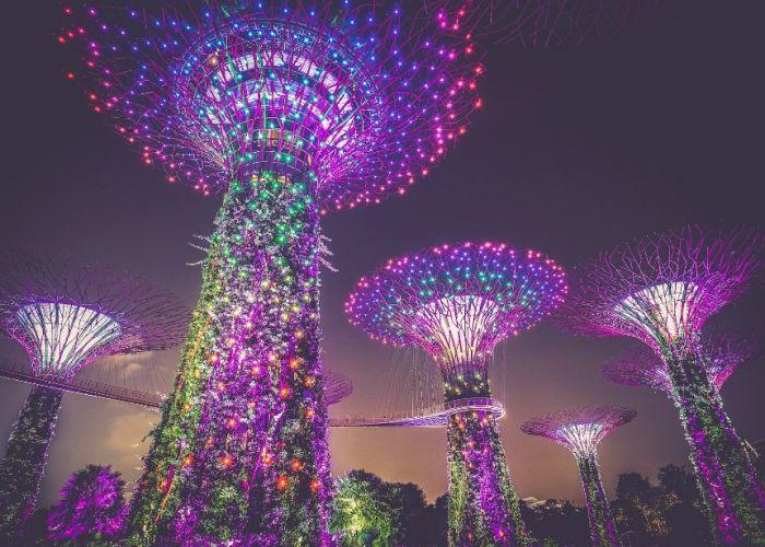 Circuit sur-mesure à Singapour : les incontournables en sept jours