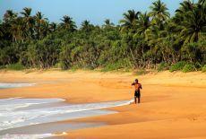 Voyage au Sri Lanka: Les plages