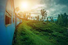 Voyagiste Sri Lanka : Quel circuit en individuel ?