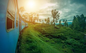 Le Sri Lanka au rythme du train en quatorze jours