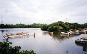 Voyage découverte du Sri Lanka en version courte de sept jours