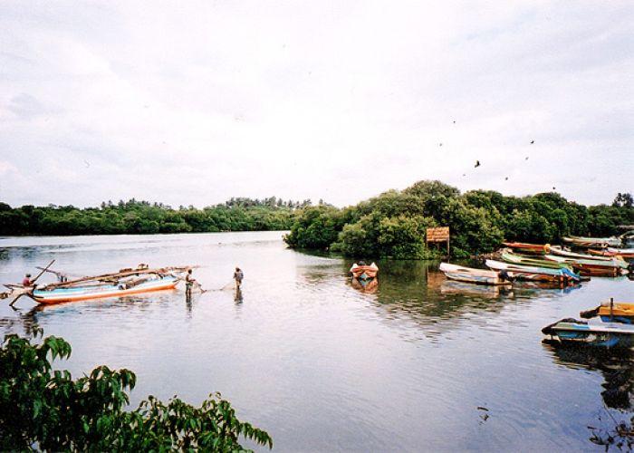 Voyages Tendance et Voyages à Thèmes au Sri Lanka