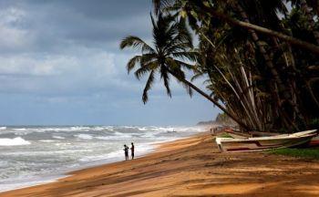 Voyage au Sri Lanka en onze jours