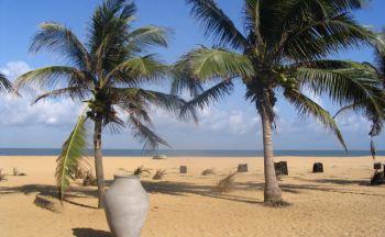 Essentiels de l'été au Sri Lanka en douze jours