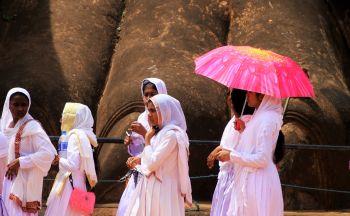 Circuit sur-mesure au Sri Lanka: les incontournables en deux semaines