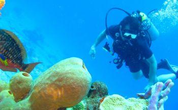 Voyage en Thaïlande: la rhapsodie bleue du Golfe de Siam