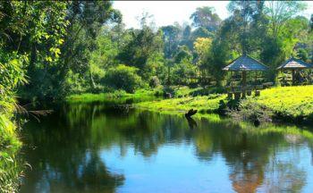Voyage découverte des temples thaïlandais en seize jours