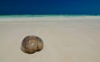 Voyage à Loei et séjour balnéaire en dix jours