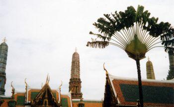 Voyages Tendance et Voyages à Thèmes en Thaïlande