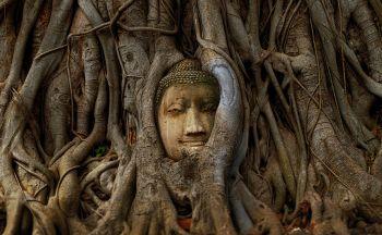 Voyage combiné Thaïlande et Laos en dix neuf jours
