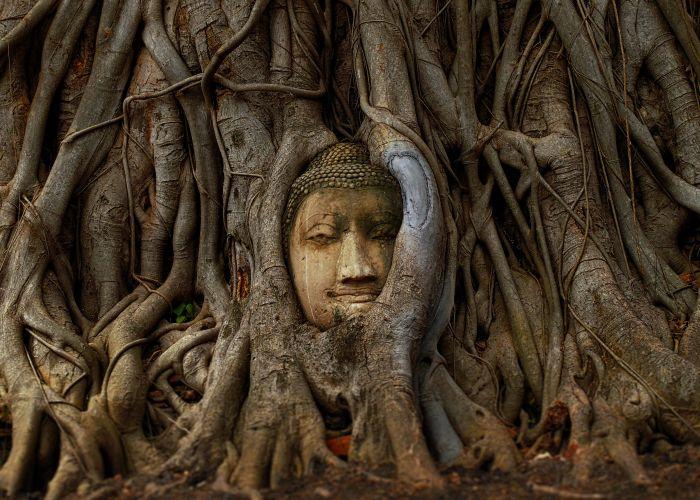 Voyage combiné : Thaïlande et Laos en dix neuf jours