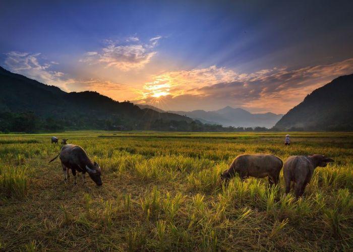 Séjour sur-mesure en Thaïlande : excursion à Lahu en quatre jours