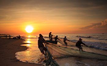 Vietnam, quelle est la meilleure formule de voyage?