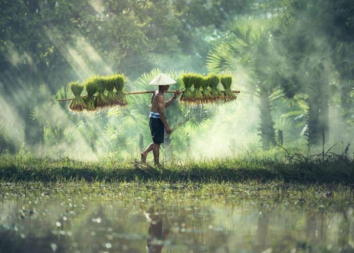 Voyage combiné Laos, Cambodge et Vietnam en trente et un jours