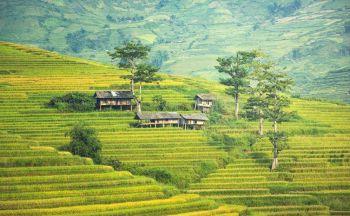Découverte du Vietnam en Fugue Tonkinoise en vingt et un jours