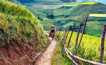 Circuit sur-mesure au Vietnam : le Nord en train en quatre jours